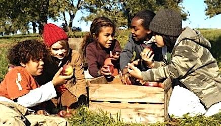orchard kids